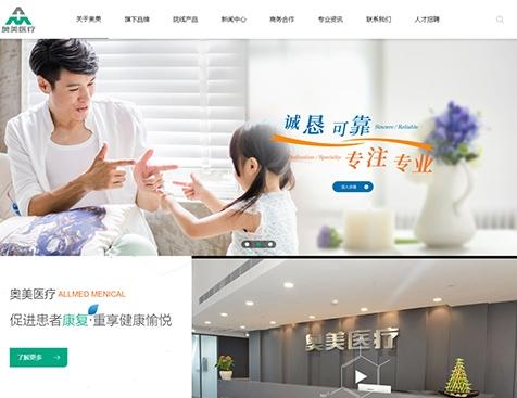 宜昌奥美医疗用品贸易有限公司网站建设项目